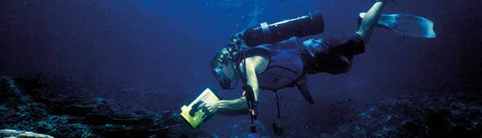 SA diving industry | Facing difficult times | Outdoor news